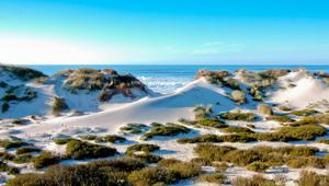 20120227 Praia Osso Baleia dunas